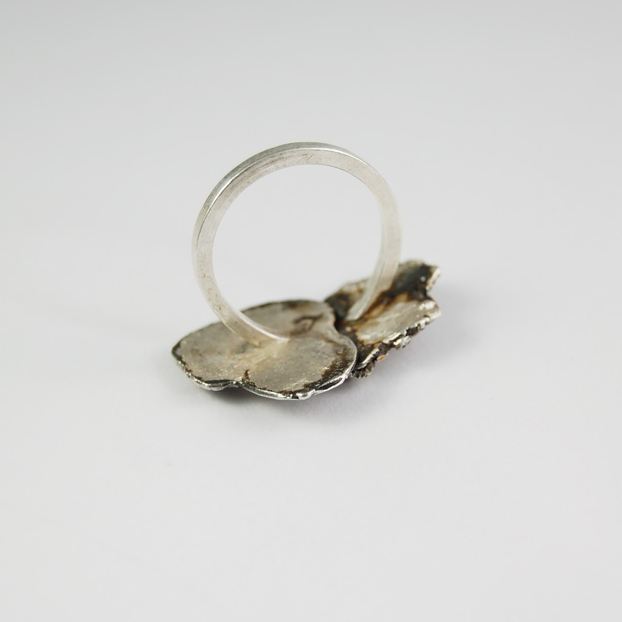 Double silver ring